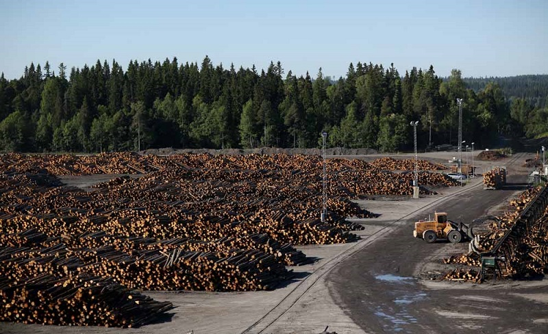 NORRSKOG SWEDEN: 430,000 M3 YEAR OF WOOD PRODUCTS