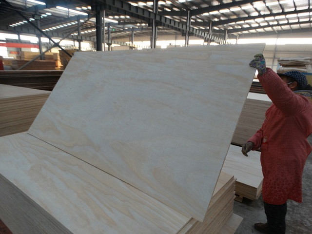 XUZHOU MEGA: HIGH QUALITY PLYWOOD FROM CHINA. 徐州旭日美嘉木业有限公司