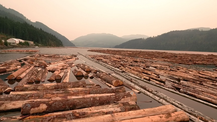SAN GROUP CANADA: HAS HAD ITS ROOTS IN THE LUMBER INDUSTRY SINCE 1979