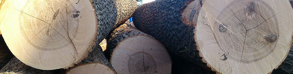 STRONGWOOD_UAE: IMP.-EXP. & TRADING FOR WOOD