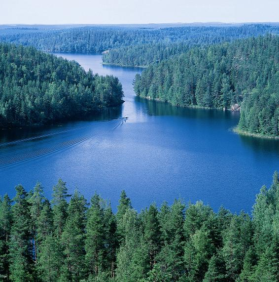 FINLAND: Forest-based sector introduces a vision reaching up to 2025: Evolving forest industry – prosperous bio-economy.